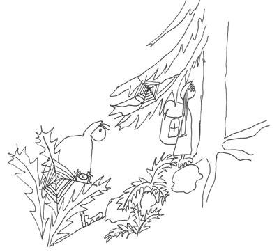 W sudeckim lesie. Rys. A. A.Gawryś.