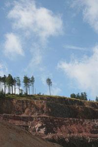 Kopalnia melafiru koło Rybnicy Leśnej. Fot. J. Gawryś.