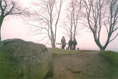Na Wieżycy. Fot. J. Gaczyńska.