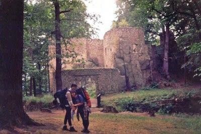 Ruiny zamku Bolczów. Fot. A. Gasek.