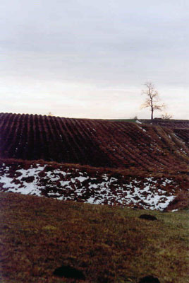 Krajobraz świętokrzyski zimą. Fot. A. Gawryś.