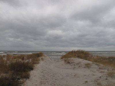 Morze Bałtyckie zimą. FOt. J. Gaczyńska.